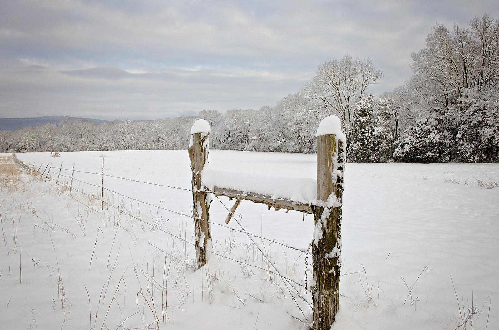 snow-2_wofford-3.jpg