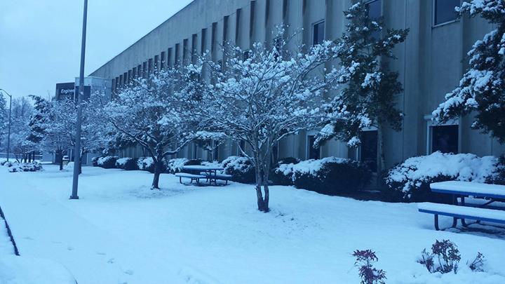 Snow at Roper