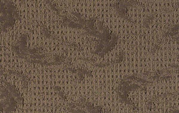 Shaw Chocolate Kiss Carpet