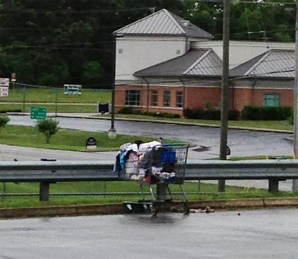 LaFayette Shopping Cart