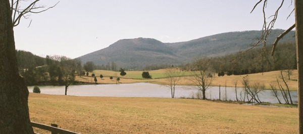 Western Walker County