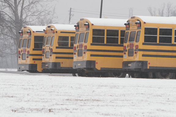 Snowy Walker Co Busses