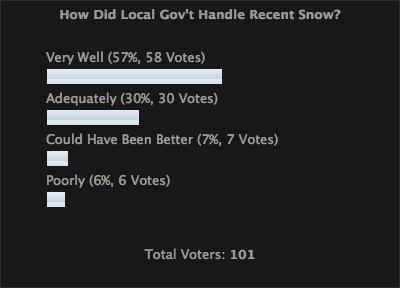 Survey Results - Snow Removal
