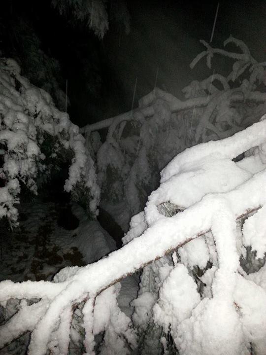 February Snow Blocks Driveway