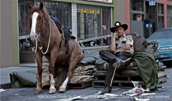 Horse on Walking Dead Set