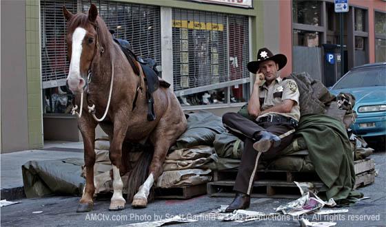 Horse on Walking Dead Set
