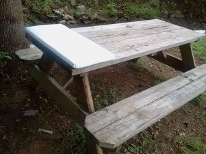 Caboose Park Picnic Table Bed