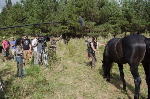 Walking Dead Horse / Bucephalus