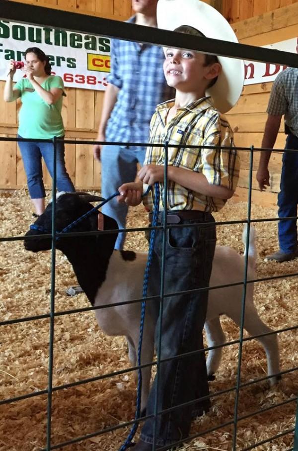 Mountain Cove Farms Fair / 4H Sheep Exhibit