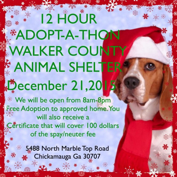 Walker Co Animal Shelter Adopt-A-Thon 2015
