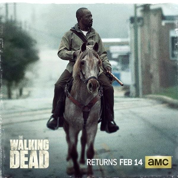 The Walking Dead / February 2016 Promo - Tommie Turvey Horse