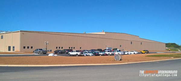 Audia Plant Front
