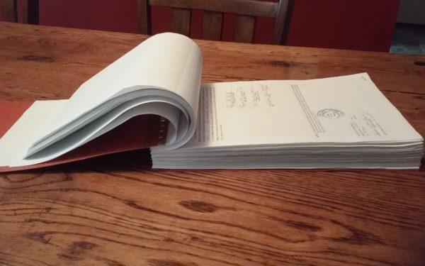 Lamb Petition Final Copy