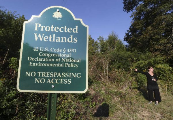 McLemore's Cove Protected Wetlands