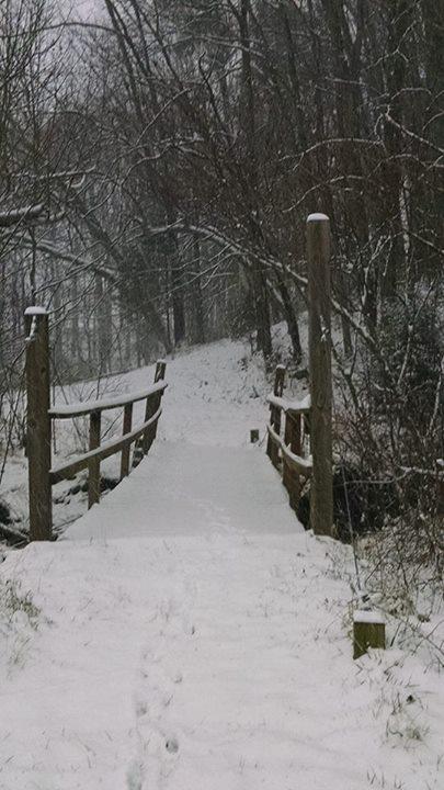 snow-2_camp_new_dawn.jpg