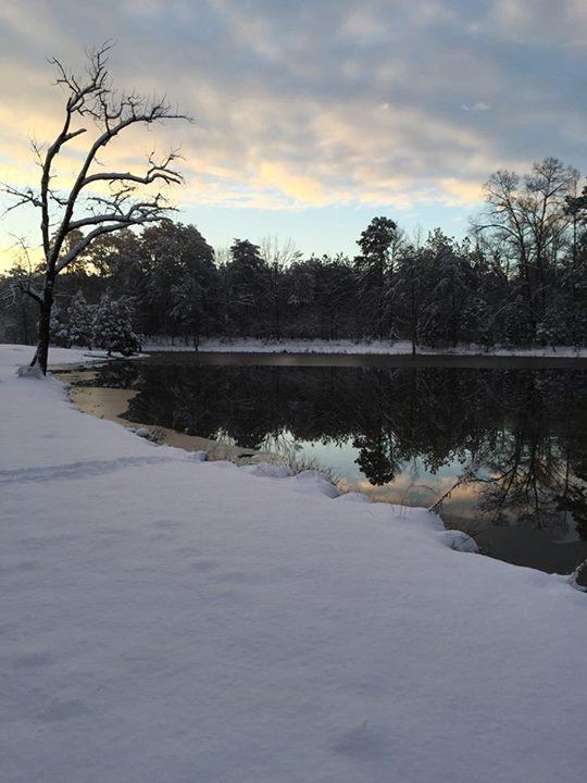 snow-2_pond.jpg